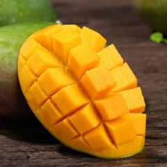 凯特芒果新鲜水果大芒果